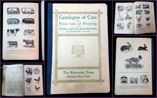Catalogue of Cuts and Price List of Printing for Poultry and Live Stock Breeders and Business Men in General. Riverside Press.New York.