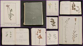 Herbarium Journal with Watercolors. .England.c1900