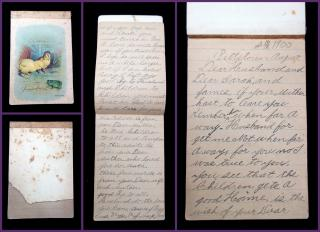 "Anna ""Annie"" Brown Pegg Goodbye Letter to Husband and Children written on Deathbed. .Alexandria, NJ.1900"