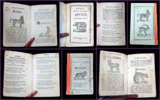 Married Chap Book: Children's History of Beasts, No. 3 and  Children's History of Beasts, Advice, and Select Hymns. Sanbornton Press.Sanbornton, NH.1835-1836