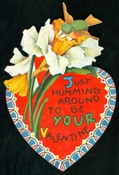 Humming Bird Valentine - 'Just Humming Around'