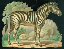"6"" Embossed Scrap Zebra in Natural Setting"