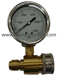 5000 PSI Stainless Steel Quick Connect Pressure Gauge 8.712-208.0