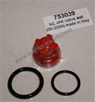 Hotsy Pressure Washer Pump Valve Kit 8.717-590.0
