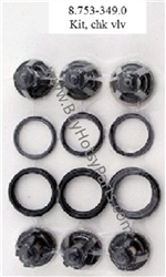 Hotsy Pressure Washer Pump Check Valve Repair Kit 8.753-349.0