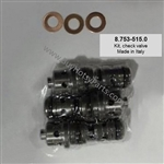 Hotsy Pressure Washer Pump Cartridge Check Valve Repair Kit 8.753-515.0