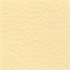 Study Bible End Papers - Light Tan