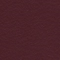 Study Bible End Papers - Burgundy/White