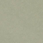 "St. Armand Old Master Paper - Gaspe (jade green)  18"" x 24"" 90gr"