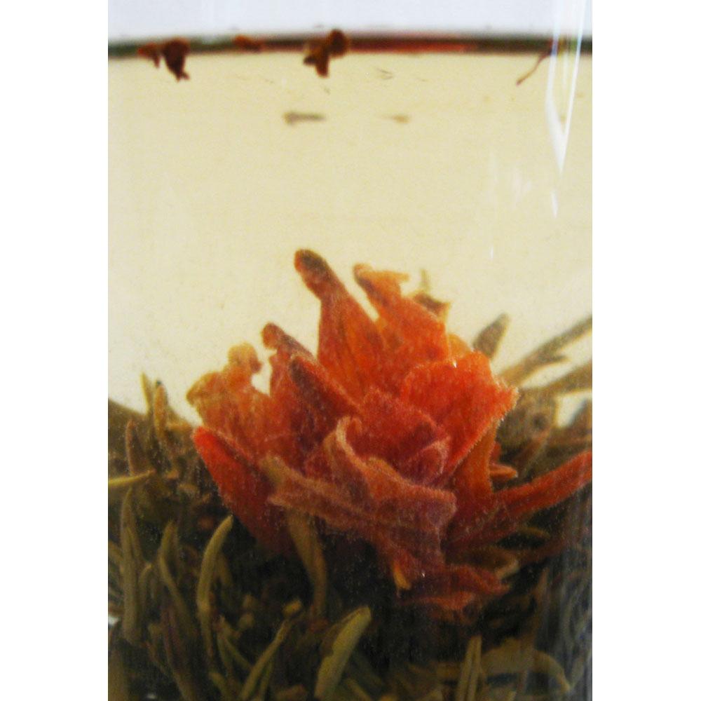 Osmanthus Blooming Tea Blooming Flower Tea Lily Osmanthus Tea