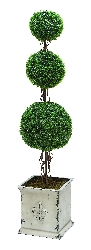 "Chloe 62"" Tri Balls Botanical in Boxwood"