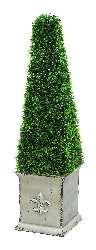 "Alexander 37"" Pyramid Botanical in Boxwood"