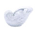 Arianna Magnificent Sea Shell