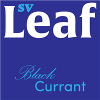S. Vape Leaf - Blackcurrant 10ml