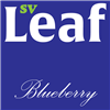 S. Vape Leaf - Blueberry 10ml
