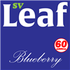 S. Vape Leaf - Blueberry 6 X 10ml (6 Pack)