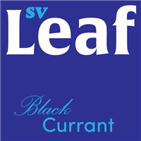 SafeVape, LEAF, 10ml, Blackcurrant, Eliquid, 3 Pack, 6 Pack, E-Liquid, Ireland, Irish, Vape, Oil,