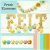 Felt Balls MIX -  Fresh Blossom