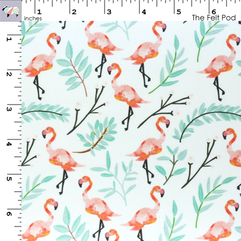 Coral Flamingo in Shade