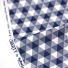 Land of Liberty Gingham Blue