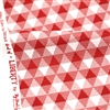 Land of Liberty Gingham Red