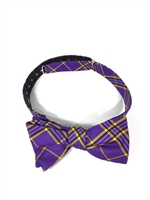 East Carolina University Tartan Silk Bow Tie