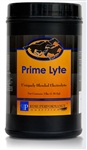 PRIME PERFORMANCE NUTRITION PRIME LYTE