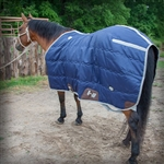 Cactus Gear Stable Blanket