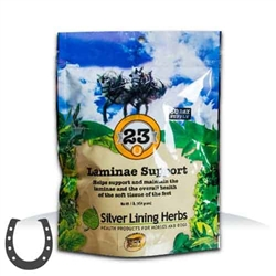 Silver Lining Herbs Laminae Support