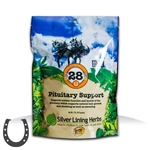 Silver Lining Herbs Pituitary Support