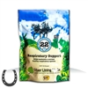 Silver Lining Herbs Respiratory Support