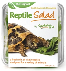 Reptile Salad 40g cup