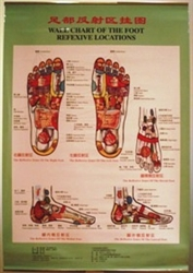 Foot Reflexology Wall Chart