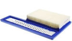 Onan 0140-3116 Air Filter, Marquis Gold & Platinum Gas & LP Vapor