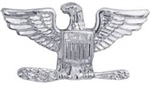 VIEW Colonel 0-6 Lapel Pin