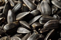 Black Oil Sunflower Seeds (organic)