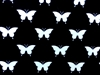 Black & White BUTTERFLIES NEW!