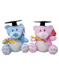 7 inch Sweet Grad Bear with Hat & Diploma