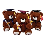 9 inch Brown Bear Graduate with Cape Plush