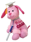 12 inch Pink Princess Grad Autograph Poodle with Pen