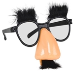 Groucho Disguise Set