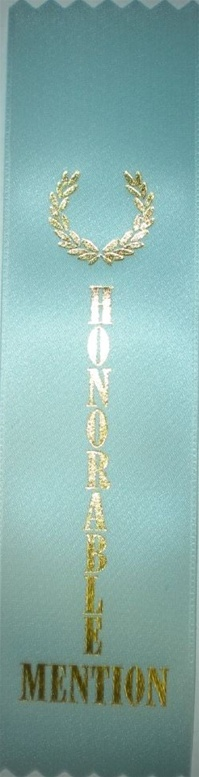 2in x 8in LIGHT BLUE HONORABLE MENTION Ribbon