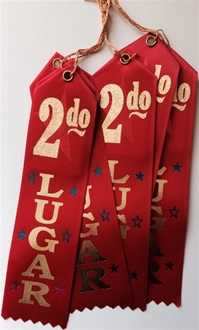 2in x 8in Spanish RED 2do LUGER Ribbon