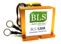 BLS-120A 120V ELECTRIC VEHICLE DESULFATER
