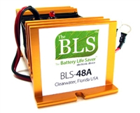 BLS-48A 48V ELECTRIC VEHICLE DESULFATER