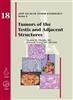 Tumors of the Testis & Adjacent Structures
