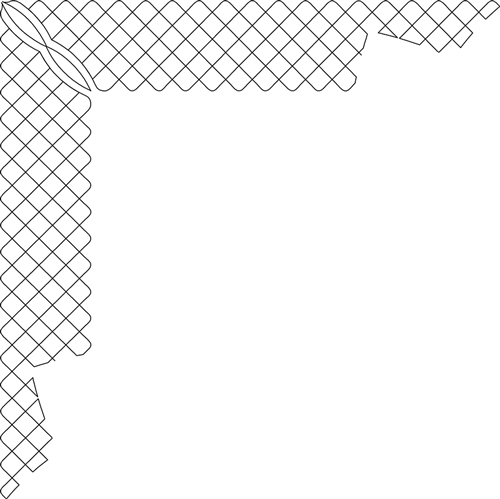 DPDQ Inner Border Crosshatch