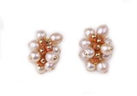 "Beautiful Cream Pearl & Sciacca Coral Cluster Post Earrings by Rajola. Hand crafted in Italy, these Designer Earrings are in 18k Yellow Gold with lever backs. Perfect alone, with your pearls or with any of our Sciacca Coral Necklaces. L 1 1/4"" X W 3/4""."