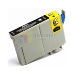 Epson T0691 Ink Cartridge