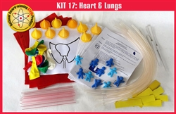 SS-925-1117 Kit 17: Heart and Lungs